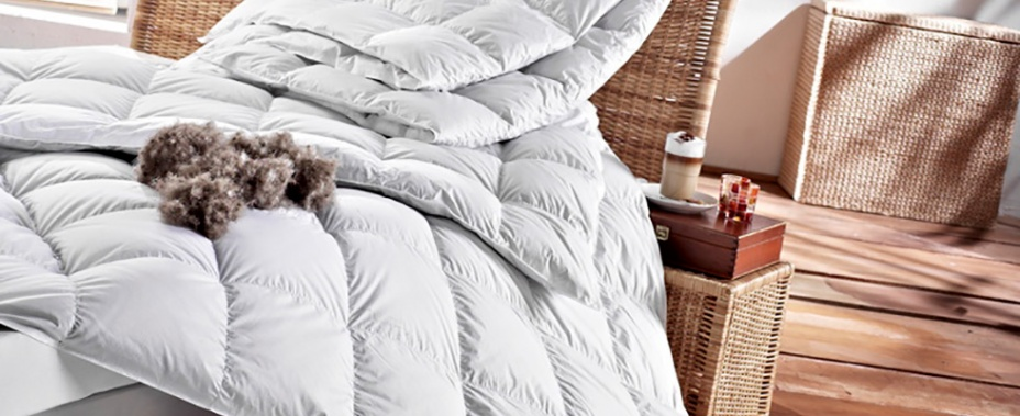 Eiderdaune Bettdecken Luxus Für Den Schlaf Die Bettdecke Der